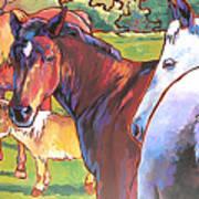 Anjelica Huston's Horses Art Print
