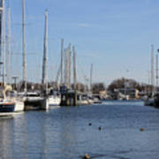 Annapolis - Harbor View Art Print
