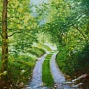 Annecy Forest Afternoon Art Print