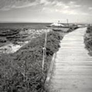 Another Asilomar Beach Boardwalk Black And White Art Print