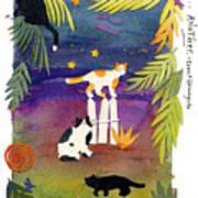 Another Cat 5 Art Print