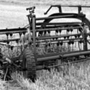 Rake The Hay Art Print