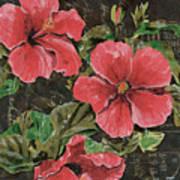 Antique Hibiscus Black 2 Art Print