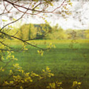 Antiqued Grunge Landscape Print by Sandra Cunningham