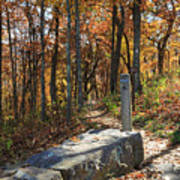 Appalachian Trail In Shenandoah National Park Art Print