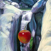 Apple Falls Art Print