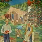 Apple Industry Art Print