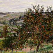 Apple Trees Near Vetheuil Art Print by Claude Monet