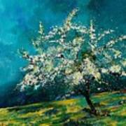 Appletree In Spring Art Print
