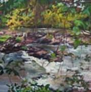 Appomattox View Art Print