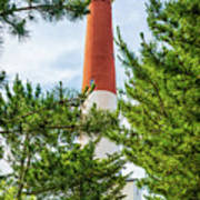 Approach To Barnegat Light Art Print
