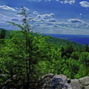 Approaching Little Gap On The Appalachian Trail In Pa Art Print
