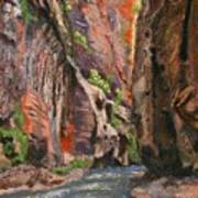 Apricot Canyon 2 Art Print