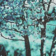 Aqua Aspens Art Print
