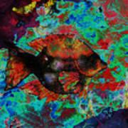Aquatic Director 2 Art Print