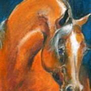 Arabian 1 Art Print