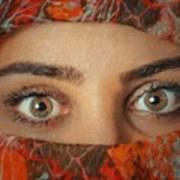 Arabian Beauty Art Print