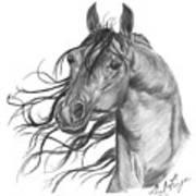 Arabian Head Art Print