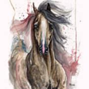 Arabian Horse 2013 10 15 Art Print