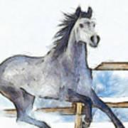 Arabian Horse And Snow - Pa Art Print