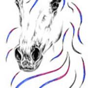 Arabian Horse Style Art Print