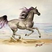 Arabian In Wind Art Print