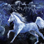 Arabian Night Art Print