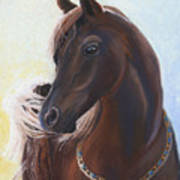 Arabian Prince Art Print