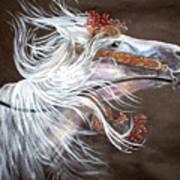 Arabian Stallion Art Print