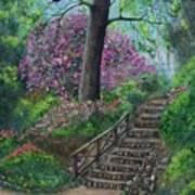 Araluen Abloom Art Print