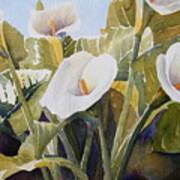 Aram Lillies Art Print