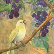 Arbor Song Art Print