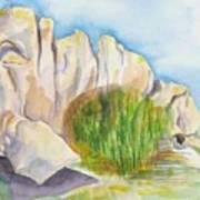 Arboretum Rocks Art Print