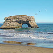 Arch In The Sea With Pelicans Flying By, At Natural Bridges State Beach, Santa Cruz, California Art Print