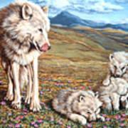 Arctic Summer Art Print