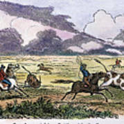 Argentina: Gauchos, 1853. Gauchos Catching Cattle On The Argentine Pampas. Wood Engraving, American, 1853 Art Print
