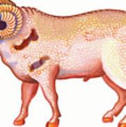 Aries The Ram Art Print