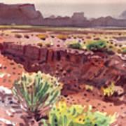 Arizona Arroyo Art Print