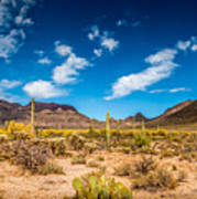 Arizona Desert #2 Art Print