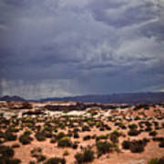 Arizona Rainy Desert Landscape Art Print
