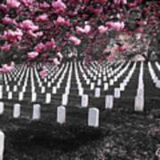 Arlington National Cemetery Art Print