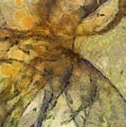 Arraignment Surface  Id 16097-222826-11240 Art Print
