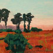 Arroyo Grande Vista Art Print