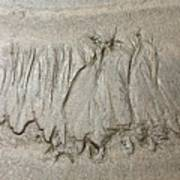 Art Created By Nature On Sand  Art Print