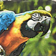Art In Moku Hanga Style Art Print