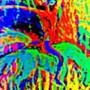 The Artist Of The Burning Rainbow  Art Print