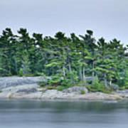 Artistic Granite And Trees  Art Print
