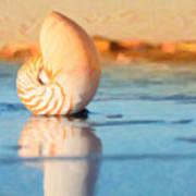 Artistic Nautilus Art Print