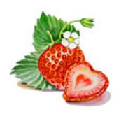 Artz Vitamins A Strawberry Heart Art Print