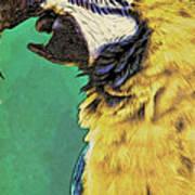 Aruba Yellow Art Print